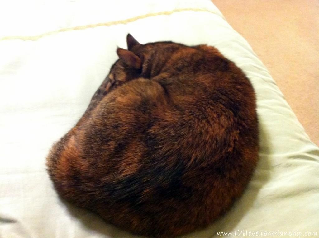 Caty-Sleeping2