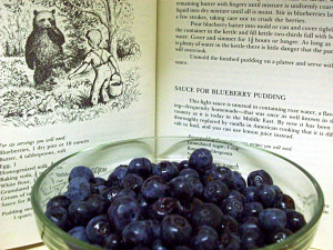 BlueberriesNBook