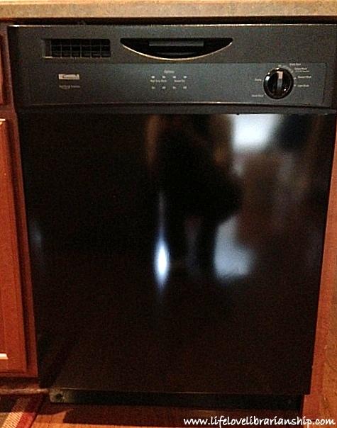 The old dishwasher